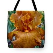 Amber Iris Tote Bag