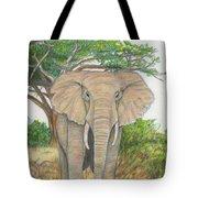 Amboseli Elephant Tote Bag