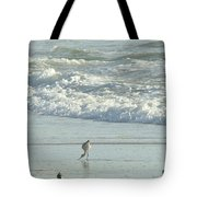 American Avocet In Non-breeding Plumage      Recurvirostra Americana  Tote Bag