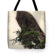American Bald Eagle In Tree Tote Bag