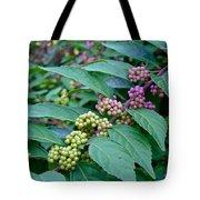 American Beautyberry Shrub - Callicarpa Americana Tote Bag