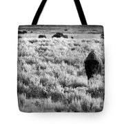 American Bison In Black And White Tote Bag by Sebastian Musial