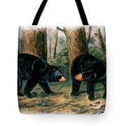American Black Bear, 1844 Tote Bag