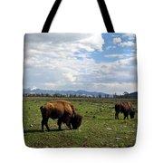 American Buffalo 10 Tote Bag