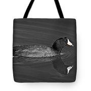 American Coot Tote Bag