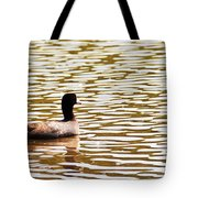 American Coot Floating By Tote Bag