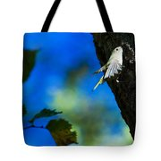 American Goldfinch Leaving Tote Bag