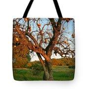 American Persimmon Tree Tote Bag