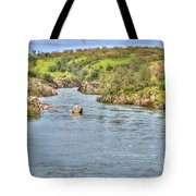 American River II Tote Bag