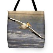 American White Pelican Pelecanus Tote Bag