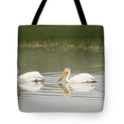 American White Pelicans Swim In A Line Tote Bag