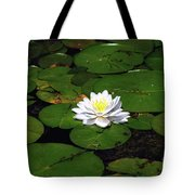American White Waterlily Tote Bag