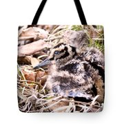 American Woodcock Chick Tote Bag