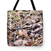 American Woodcock Chick No. 2 Tote Bag