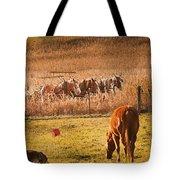 Amish Transportatin All Sizes Tote Bag