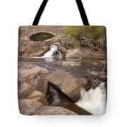 Amity Creek Scene 8 Tote Bag