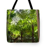 Among The Tree Ferns Tote Bag