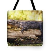 An American Alligator On A Log Tote Bag