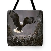 An American Bald Eagle Flies Tote Bag