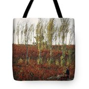 An American Bald Eagle In Flight Close Tote Bag