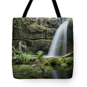 An Aquarium In Tennessee Tote Bag