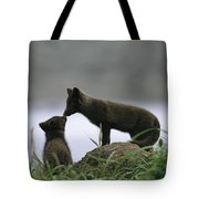 An Arctic Fox And Her Kit.  The Foxes Tote Bag