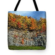 An Autumn Day Tote Bag
