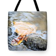 An Autumn Day's Rest Tote Bag