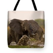 An Elephant Charges When Startled Tote Bag