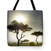 An Elephant Walks Among The Trees Kenya Tote Bag