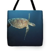 An Endangered Green Sea Turtle Swimming Tote Bag