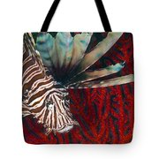 An Invasive Indo-pacific Lionfish Tote Bag