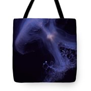 An Iridescent Blue Southern Tailed Tote Bag