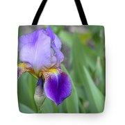 An Iris Blossom Tote Bag