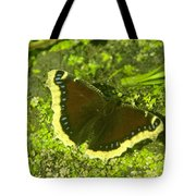 An October Butterfly  Tote Bag