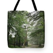 An Old Gothic Style Church In The Indian City Of Mcleodganj Tote Bag