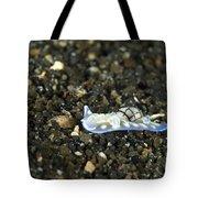An Opisthobranch On Volcanic Sand Tote Bag