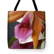 An Orchid, Probably A Cattleya Hybrid Tote Bag