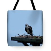 An Osprey In Maryland Tote Bag