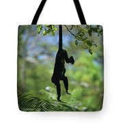 An Unidentified Monkey Hangs Tote Bag
