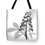 An X-ray Of A Chestnut Tree Flower Tote Bag