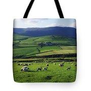 Anascual, Dingle Peninsula, Co Kerry Tote Bag