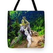 Ancient And On The Edge Tote Bag