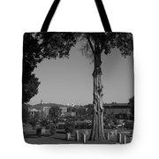 Ancient Cedars And Tombstones Tote Bag