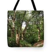 Ancient Woodland Tote Bag