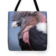 Andean Condor Vultur Gryphus Adult Male Tote Bag