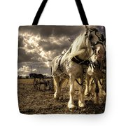 Angel And Lad  Tote Bag