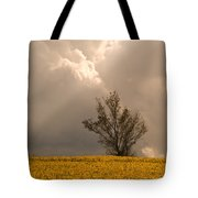 Angel From Heaven Tote Bag