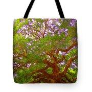 Angel Oak Tree1 Tote Bag
