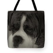 Angelic Boxer Tote Bag